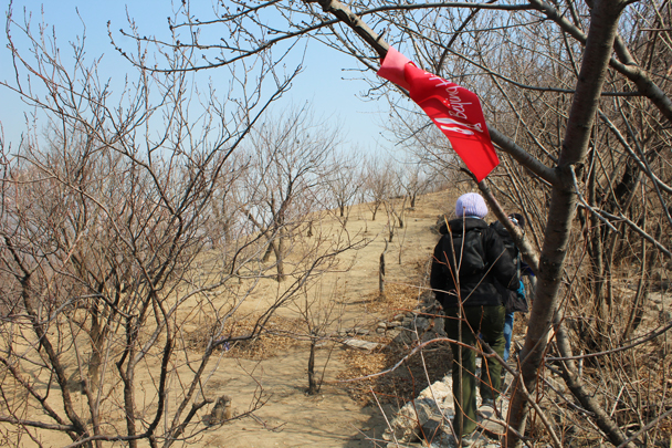 Red ribbons marking the trail on to the Great Wall - Longquanyu Great Wall and the Little West Lake, 2015/04