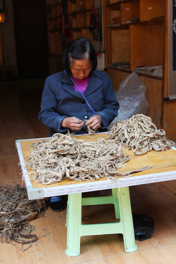 Part of the process of making paper—after boiling the leaves, they must be torn into tiny strips - Miao and Dong culture in Guizhou, 2015/04
