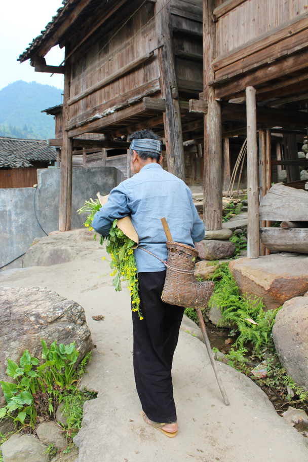 Taking some wild greens home - Miao and Dong culture in Guizhou, 2015/04
