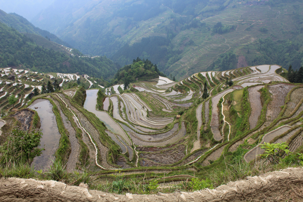 Bird's-eye view of the rice terraces, carved into a steep hillside - Miao and Dong culture in Guizhou, 2015/04