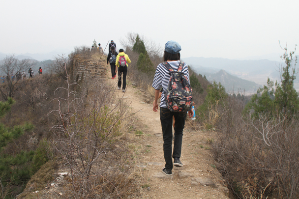 Students heading out along the Great Wall at Gubeikou - Private hike for Beanstalk International Bilingual School, 2015/04/15
