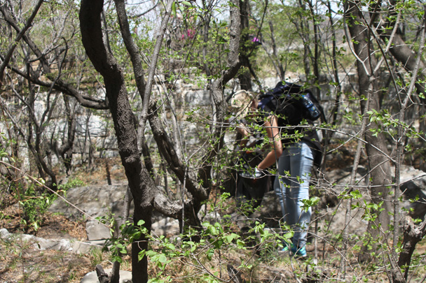 Cleaning an area off the wall that is often used for a lunch spot - Earth Day Clean Up Hike at Jiankou, 2015/4/25