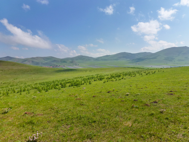 Blue skies and endless pastures give the are a very special feel - Bashang Grasslands, Hebei Province, 2015/06