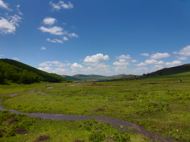 A tiny stream in the valley - Bashang Grasslands, Hebei Province, 2015/06