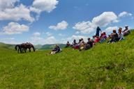Bashang Grasslands, Hebei Province, 2015/06