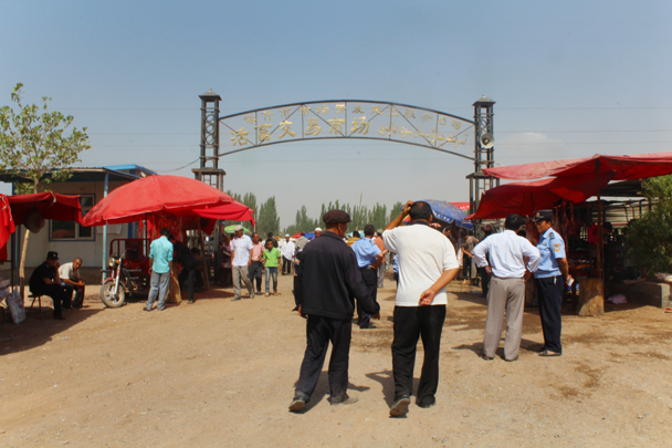 Kashgar Livestock Market - Along the Silk Road from Korla to Kashgar, 2015/06