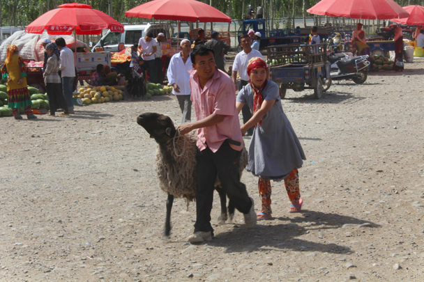 Off to market with you - Along the Silk Road from Korla to Kashgar, 2015/06