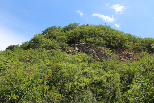Lots of greenery during the summer can make it hard to see the wall initially - Middle Switchback Great Wall, 2015/06/07