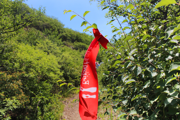 Follow our lead and our ribbons! - Middle Switchback Great Wall, 2015/06/07