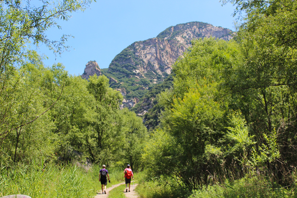 Back onto the dry trails for a while - White River hike, 2015/07/05