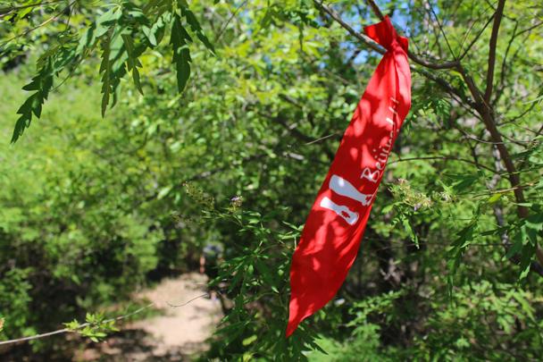 Follow us - White River hike, 2015/07/05