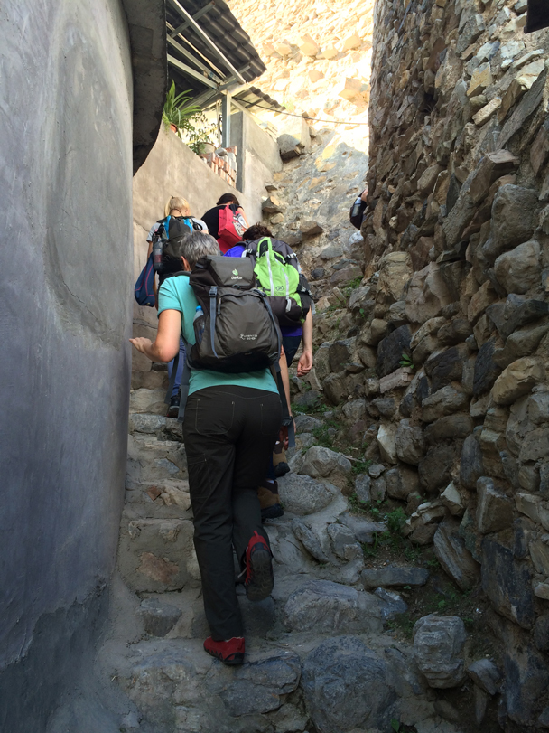 We followed stone steps up through the village - Ming Village overnight, 2015/08