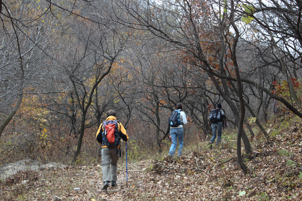 Onto the scenic part of the hike, following a trail up a wooded valley - Middle Route of Switchback Great Wall, 2015/10/25