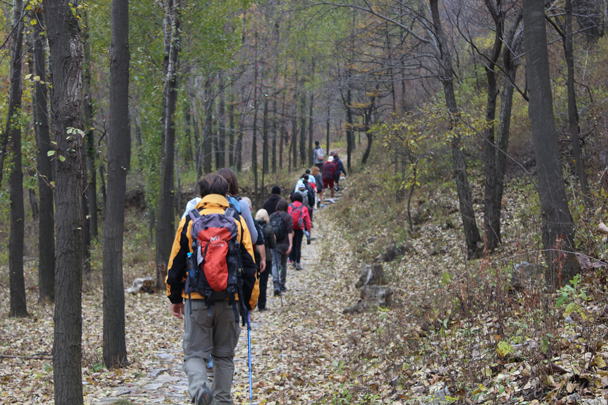 Hiking further into the forest - Middle Route of Switchback Great Wall, 2015/10/25