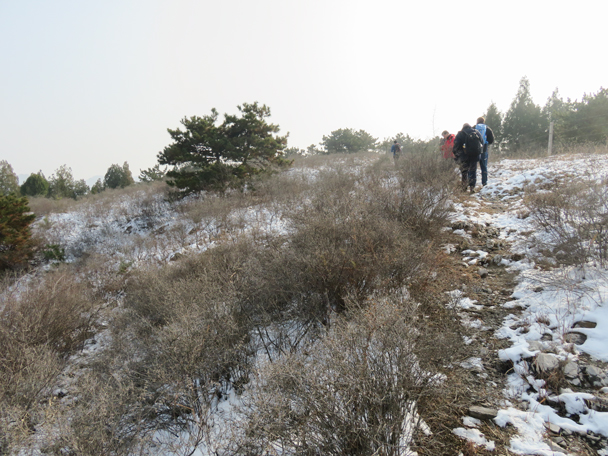 Hiking along a ridge, heading for 'The Bowl' - Rolling Hills hike, 2015/11/29
