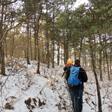 Rolling Hills hike, 2015/11/29