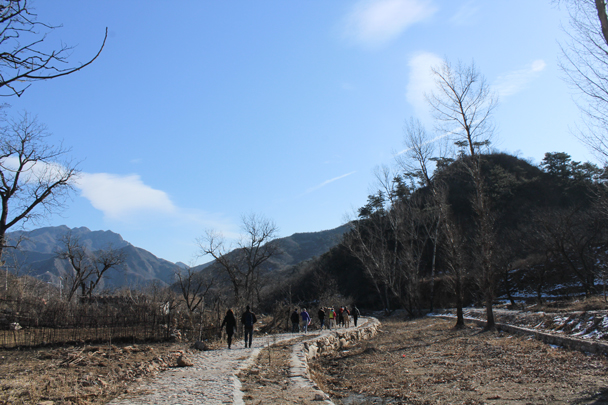 We hit the trail towards the orchards and the climb up to the Great Wall - Walled Village to Huanghuacheng Great Wall, 2016/01/13