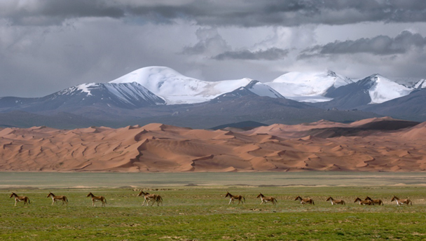 Grasslands, sand dunes, and snowy peaks