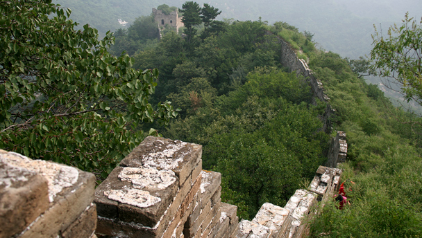 Great Wall and towers covered by trees and bushes