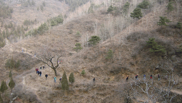Hikers traversing a hillside