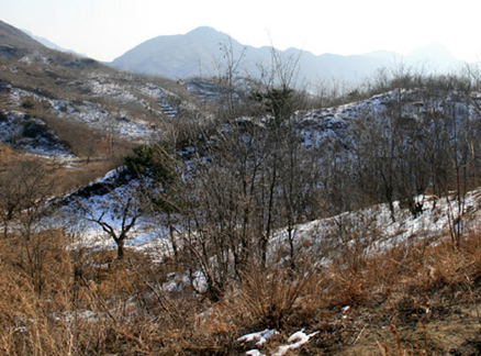 Hills of Changping District, Beijing Hikers Triangle Hike, 2009-11-22