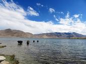 20160823-0828-Silk-Road-Korla-to-Kashgar--(42)