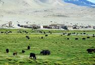 20160823-0828-Silk-Road-Korla-to-Kashgar--(45)