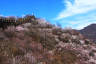20170401-Great-Wall-Spur-(15)