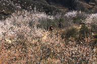 20170401-Great-Wall-Spur-(16)