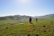 Hebei-Bashang-Grasslands-(49)