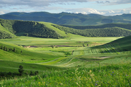 Hebei-Bashang-Grasslands-(51)
