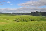 Hebei-Bashang-Grasslands-(52)