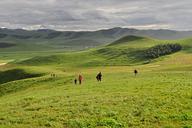 Hebei-Bashang-Grasslands-(53)