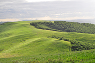 Hebei-Bashang-Grasslands-(56)