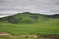 Hebei-Bashang-Grasslands-(59)