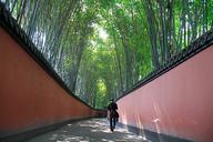JiuzhaigouandHuanglong-(75)