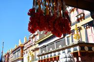 20161123-27-Lijiang-and-Shangri-La-(44)