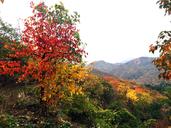 20141021-Longquanyu-Great-Wall-(1)