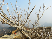 20171227-Longquanyu-Great-Wall-to-the-Little-West-Lake-(13)