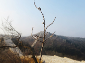 20171227-Longquanyu-Great-Wall-to-the-Little-West-Lake-(5)