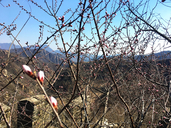 20180325-Longquanyu-Great-Wall-to-the-Little-West-Lake-(15)