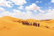 20160430-Tengger-Desert-trip-(42)
