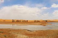 20160430-Tengger-Desert-trip-(49)