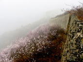 20170323-Walled-Village-to-Huanghuacheng-Great-Wall-(08)