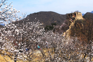 20170402-Walled-Village-to-Huanghuacheng-Great-Wall-(14)