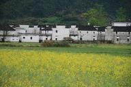 WuyuanJiangxi-(10)