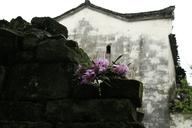 WuyuanJiangxi-(12)